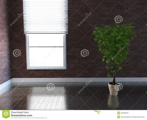 houseplant for dark room plant in a dark room 3d rendering stock illustration