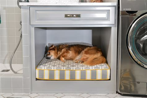 Design Kitchen Cabinet Layout Online inspired orthopedic dog bed in laundry room traditional