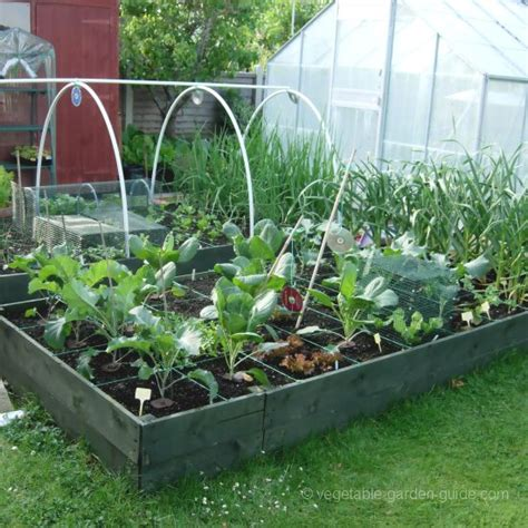 Raised Vegetable Bed by Raised Garden Beds How To Build Them For Better Vegetables