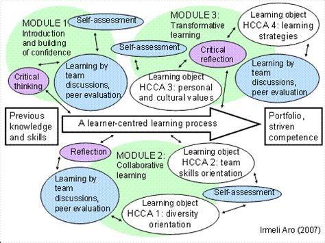 holistic cultural competence assessment model | in pre 2.0