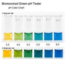 bromocresol green ph tester