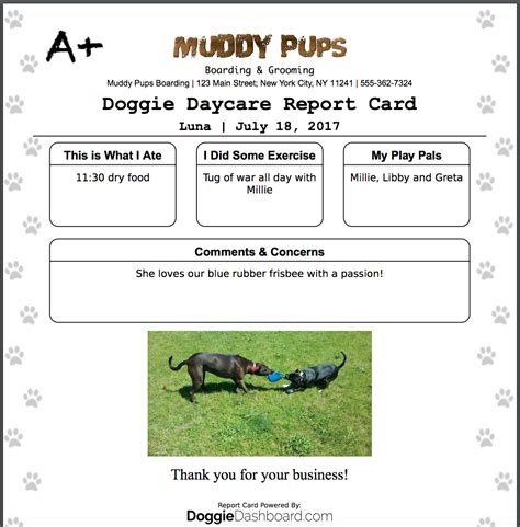 Its Dog Daycare Kennel Grooming Software | awesome dog report card template component exle
