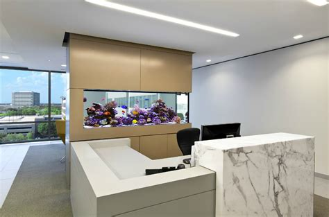 inspiring aquarium office designs   catch  eye