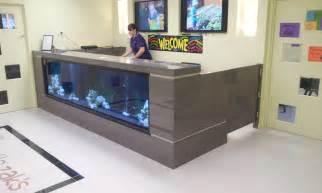 desk fish tanks custom kitchens in camden creative kitchens