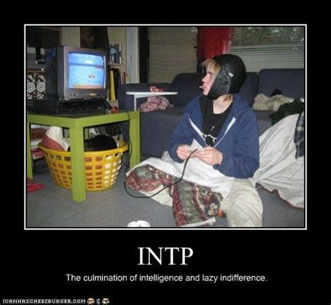 1000+ images about intp on pinterest   intj, pictures of