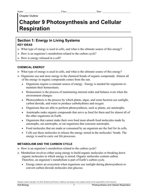 Photosynthesis And Respiration Review Worksheet by Photosynthesis And Cellular Respiration Worksheet Answers