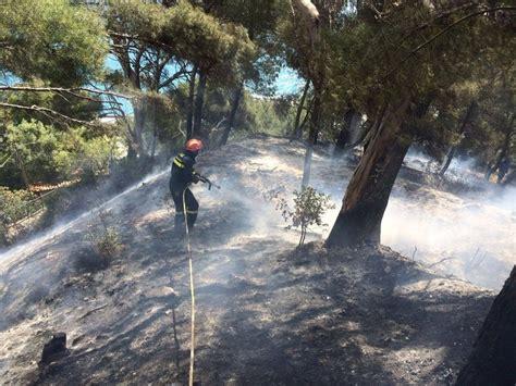 intesa sabato antincendio boschivo sabato la firma protocollo d