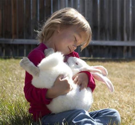 rabbits lovetoknow