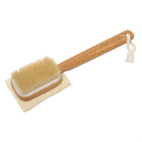 Detox Brush Does The Brush Matter by Buy Detox Loofah Brush 1 Ea By Ecopure Bath Priceline