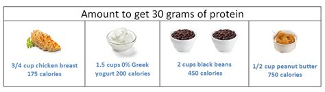 protein 30 grams how to build on a plant based diet nutrition