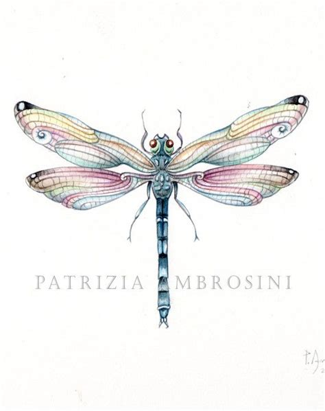 dragonfly l original 9x7 watercolour dragonfly no 5 handpainted not a