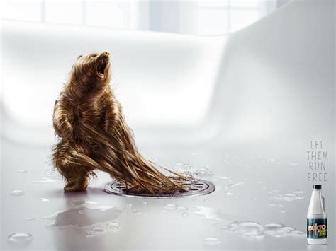 creative l dukto drain opener hairy bear and elephant ads gute werbung