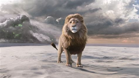 aslan the from narnia aslan narnia desktop wallpaper wallpaper wiki