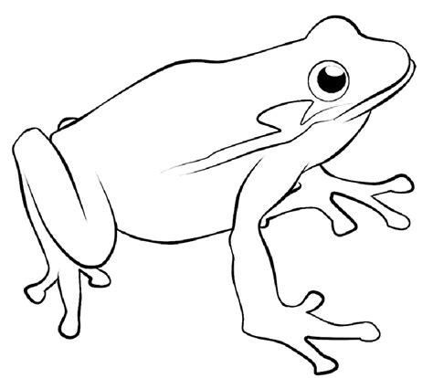 Tree Frog Coloring Pages Coloring Home Coloring Page Of A Frog