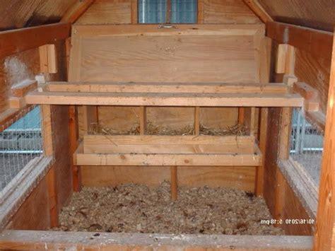 interior layout of a chicken coop interior photos of chicken coops