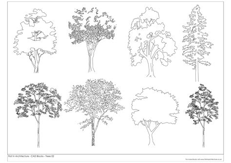 engineering drawing tree template free cad blocks trees 02 in architecture