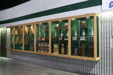 wall mounted trophy cabinets suspended trophy display fixed to wall design