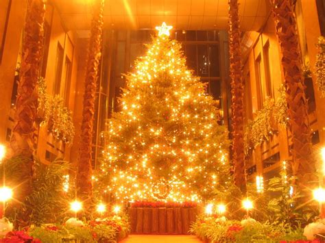 christmas tree lights wallpapers christmas tree decoration