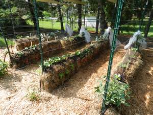 Vegetable Raised Bed Garden Layout - gardening in straw garden housecalls