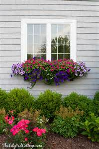flower boxes on window boxes fall window