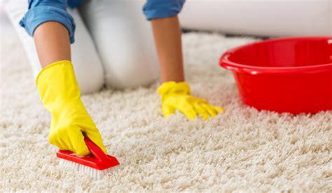aspiradora limpia alfombras c 243 mo limpiar una alfombra sin aspiradora la opini 243 n de