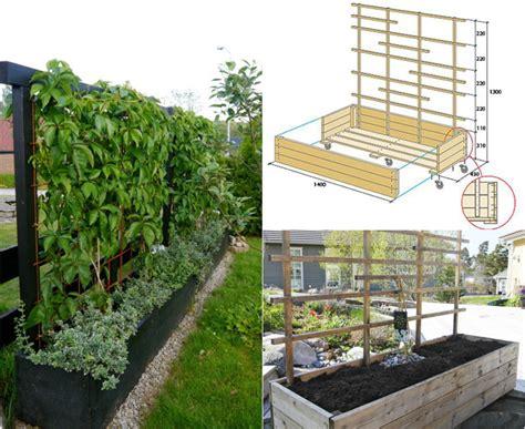 Rankgitter Als Sichtschutz by Welche Pflanzen Als Sichtschutz F 252 R Garten Und Terrasse