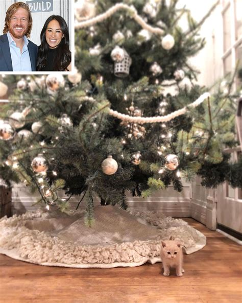joanna chip gaines chip joanna gaines new kitten people com