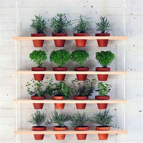 herb shelf pinterest the world s catalog of ideas