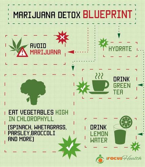 How To Detox System From by Can You Get Marijuana Out Of Your System By Juicing Detox