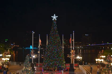 holiday lights what s up jacksonville