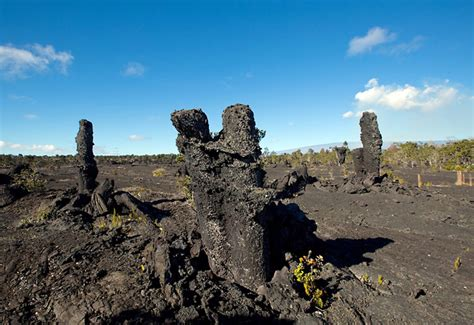 Fossil Jaynice fossils hawaiian concert among hvnp events in