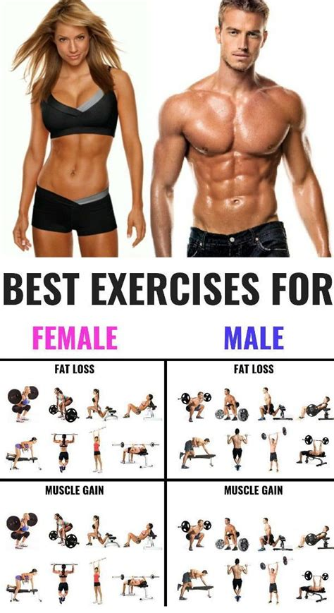 the 25 best exercises for and to build workout exercise weight