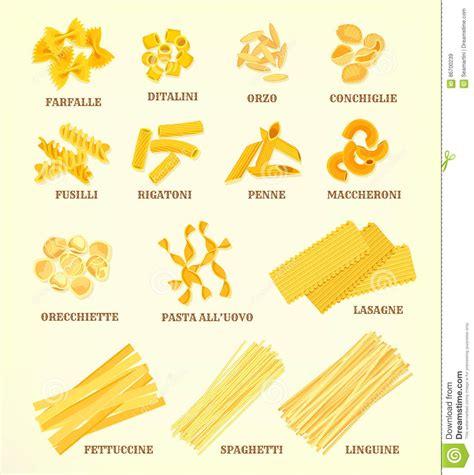 diversi tipi di pasta tipi della pasta o icone italiani di vettore di specie