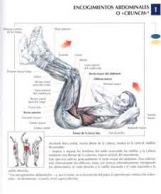Ejercicios para abdominales taringa