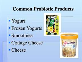 does cottage cheese probiotics ppt probiotics powerpoint presentation id 711307