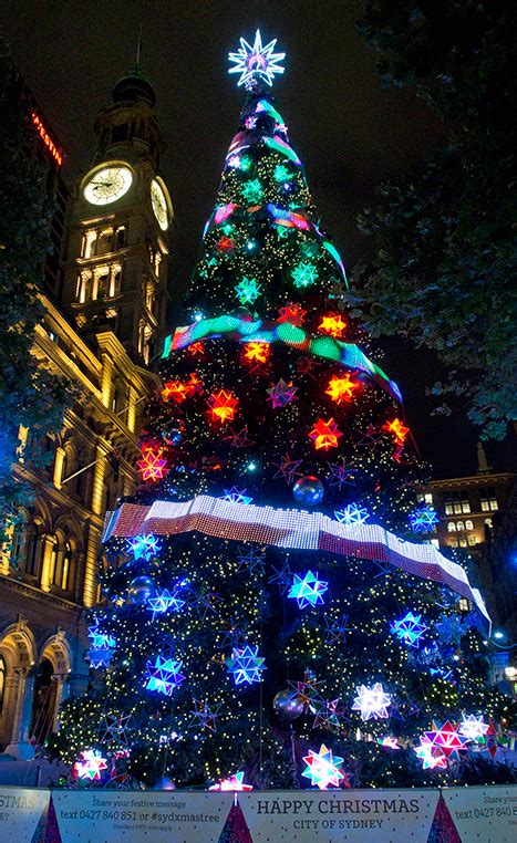 tree martin place the light projections and tree martin place