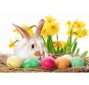Easter In Colne  Town Council Official Website