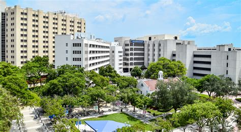 Jackson Memorial Detox Rehab by Miller School Of Medicine Cus Of Miami