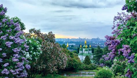 National Botanical Gardens Parking The Green City In Europe Kiev S 10 Best Parks Kiev Check In
