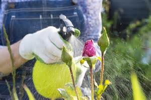 your guide to pesticides herbicides insecticides