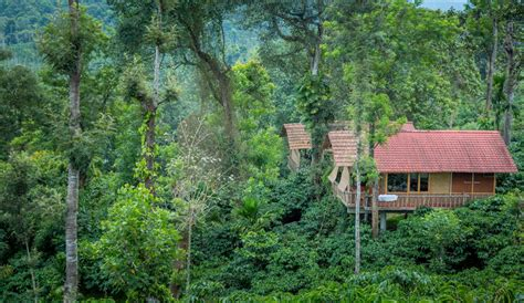 Cottages In Wayanad With Tariff by Coffee Country Resort Wayanad Cottages Stay In Wayanad