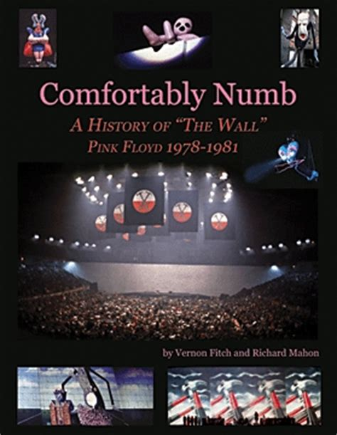 pink floyd the wall comfortably numb comfortably numb a history of quot the wall quot pink floyd