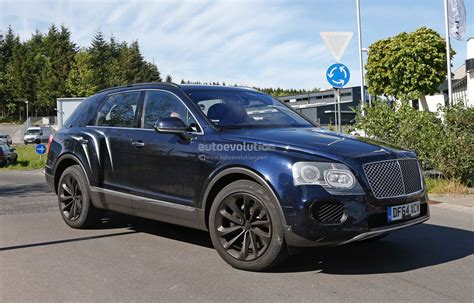bentley bentayga 2016 2016 bentley bentayga suv spotted nearly camo free