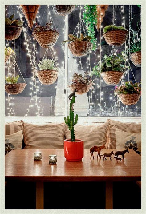 hanging plants  fairy lights     pretty