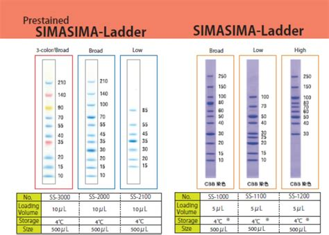 high range simasima unstained high range protein ladder cosmo bio