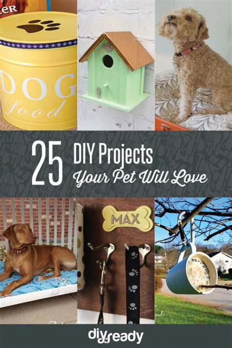 pet craft projects 25 easy and simple diy pet projects