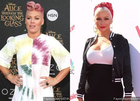 Is Pink Snarky Gossip by Pink Shuts Troll Trying To Pit Against