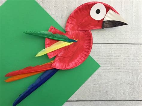 Paper Plate Bird Craft - parrot paper plate craft for rainforest craft idea
