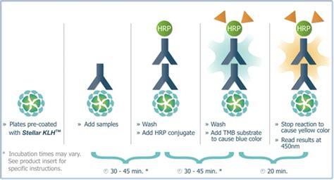 eia test order stellar klh elisa kits stellar biotechnologies