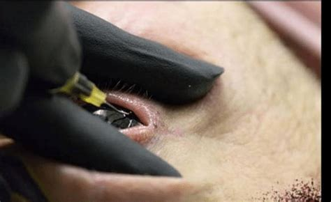 eyeball tattoos extreme body modifications